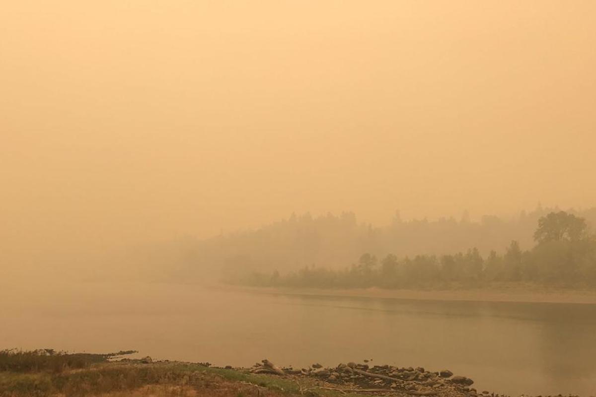 Incendios en EEUU: medio millón evacuados en Oregon ante catástrofe ambiental