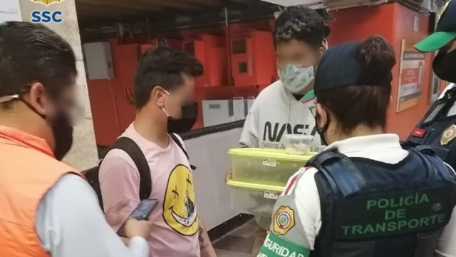 Detienen jóvenes transportar cocodrilos metro CDMX