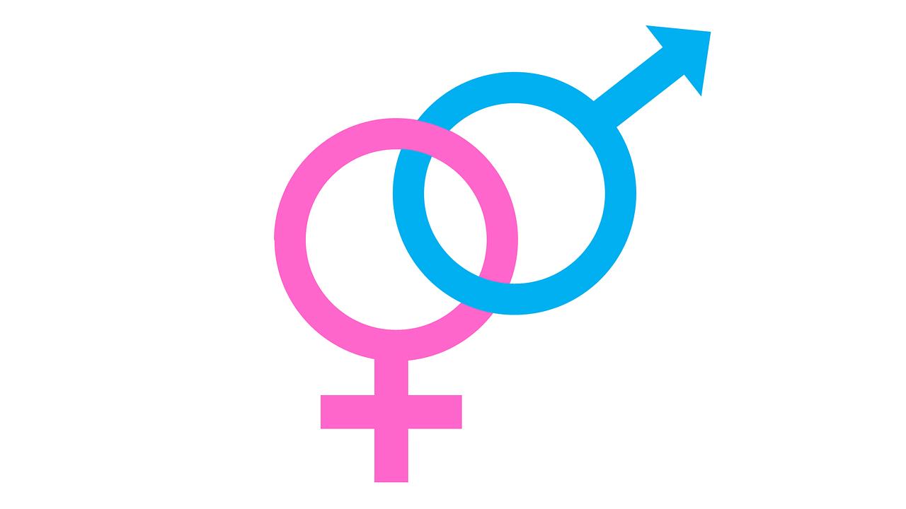 La diputada de Morena, Magaly López, propuso que en Oaxaca, los menores de edad puedan decidir sobre su identidad de género