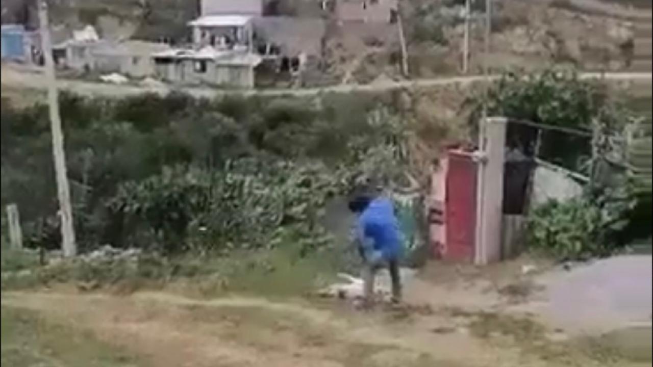 sujeto mata perrita Masha machetazos Ixtapaluca EdoMex