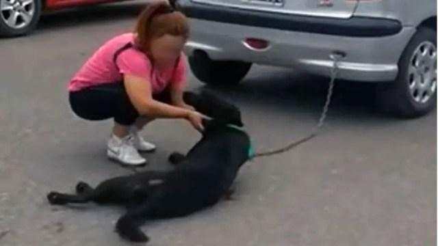 mujer ata perro su auto arrastra varias cuadras Argentina