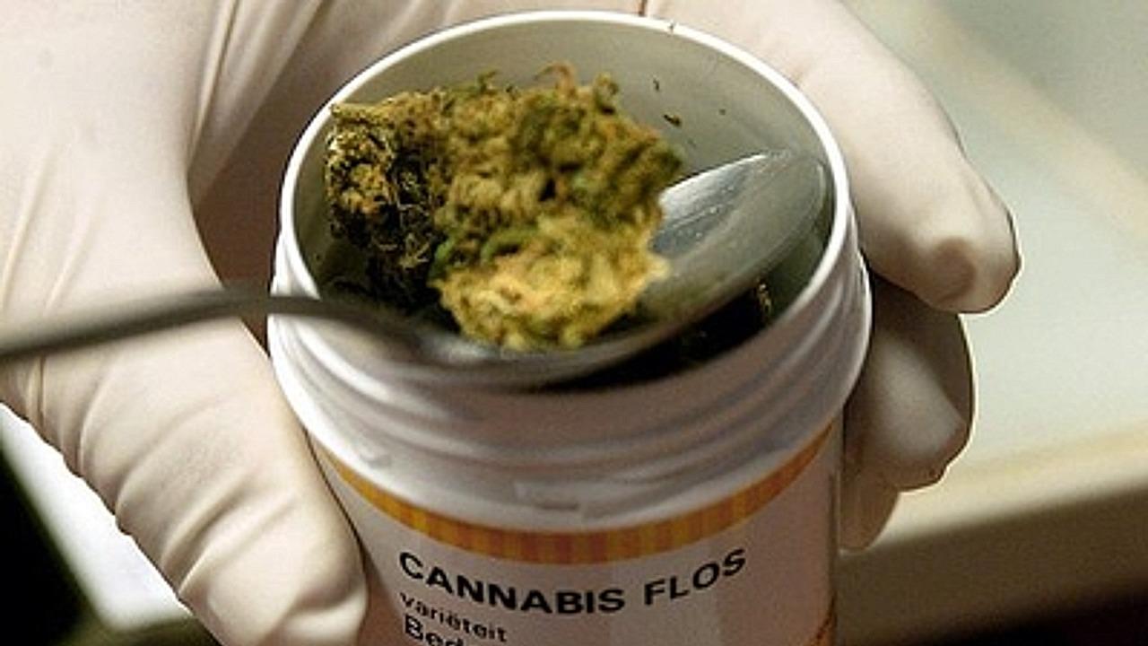 ONU reconoce oficialmente propiedades medicinales cannabis