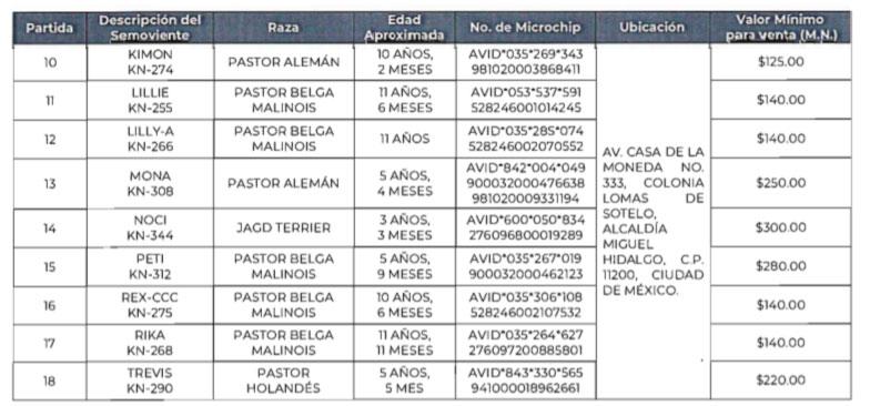 La FGR anunció que puso a la venta a 18 perritos que concluyeron su labor como agentes; su costo está entre los 125 y 300 pesos