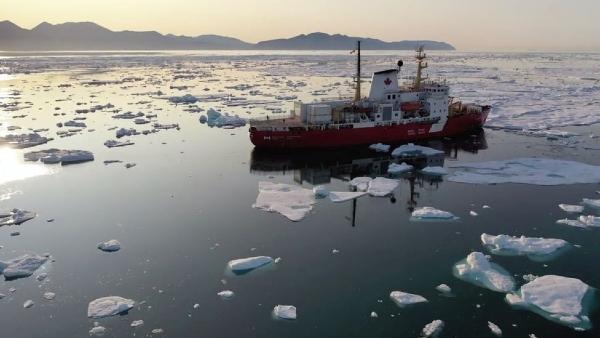 foto 1 especies descubiertas Atlántico Norte