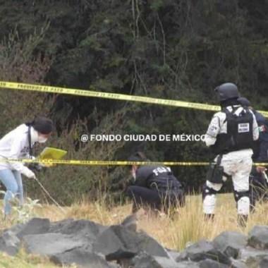 Edomex: perros devoran cuerpo de un hombre abandonado