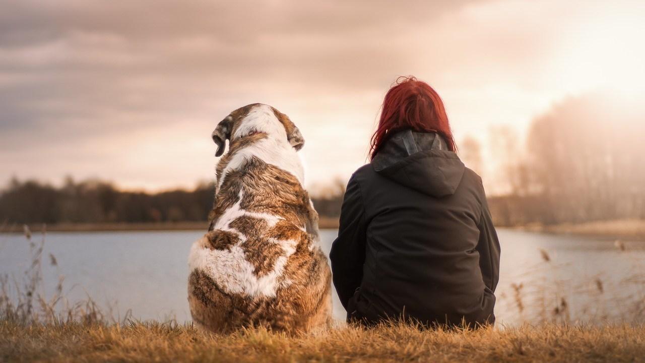 mujeres papel clave creación vínculo perro y humano