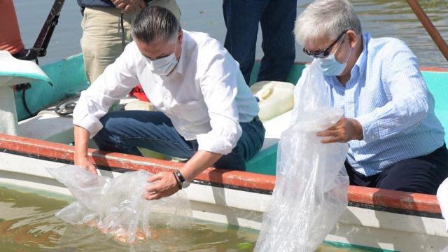 Tamaulipas: Alcalde presume liberación de 'especie invasora' en laguna