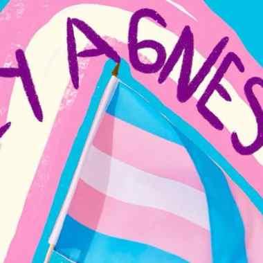 Con 34 votos a favor, el congreso de Puebla aprobó en lo general la Ley Agnes para reconocer el derecho a la identidad de las personas trans