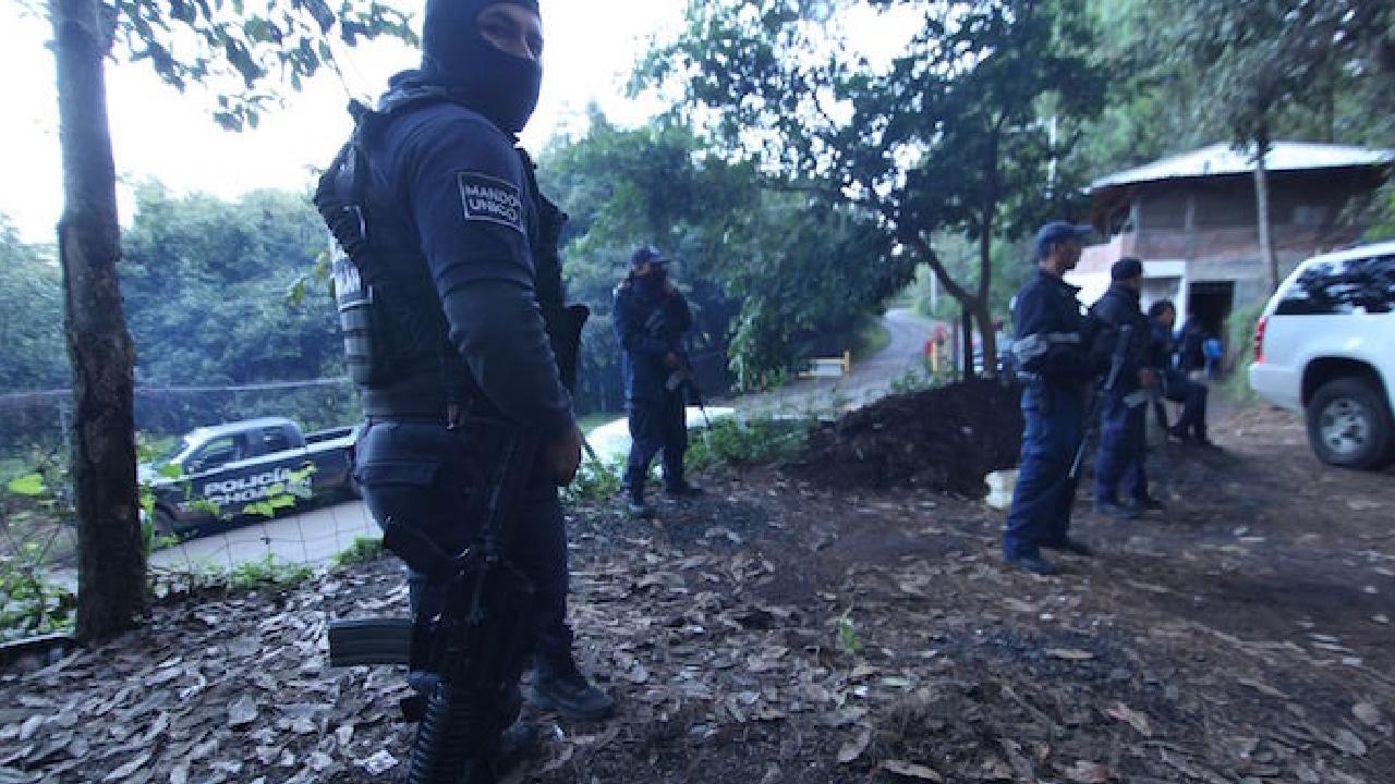 """En Michoacán la tala ilegal es regulada por """"Los Correa"""""""
