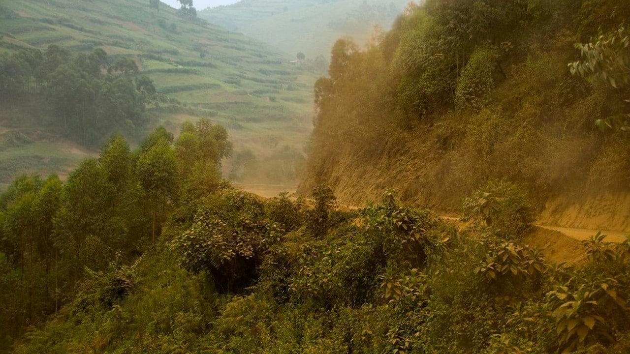 Mujer Encuentra Bebé Enterrada Viva Jardín Uganda