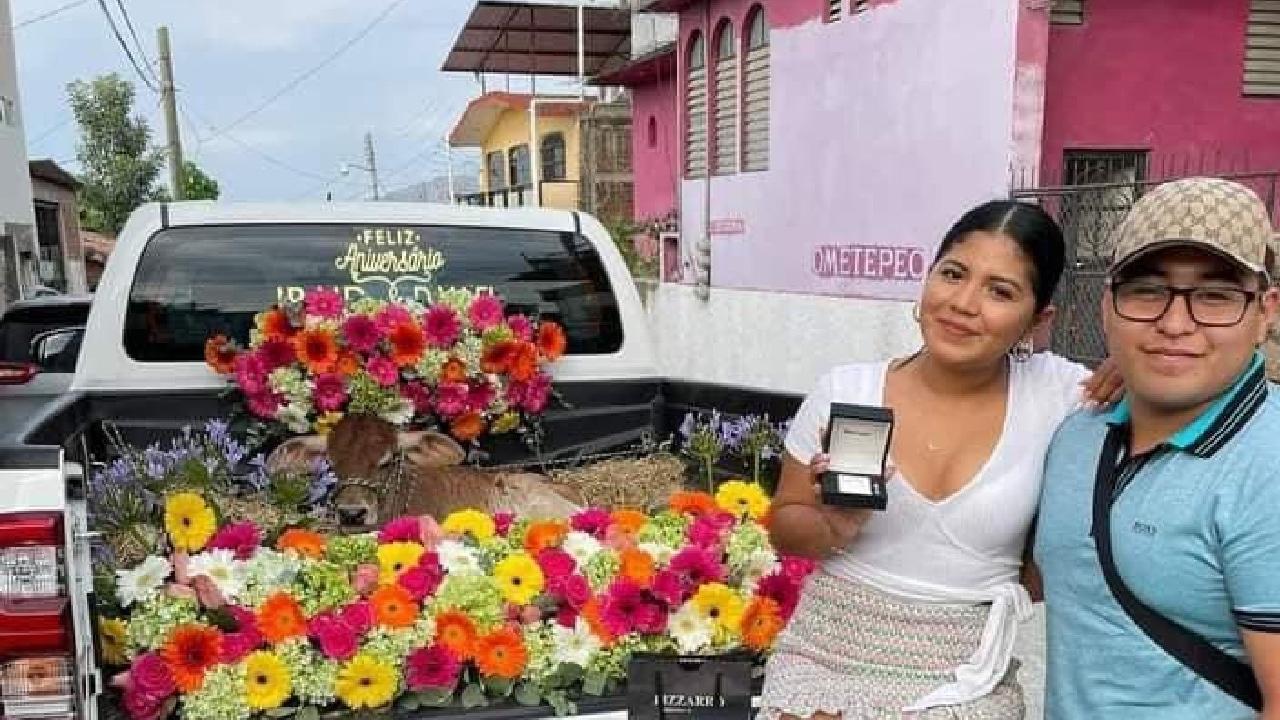 Joven regaló becerro a su novia por aniversario