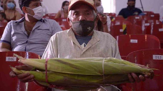 Agricultor cosechó elote más grande del mundo