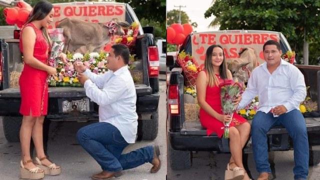 Joven pidió matrimonio a su novia con u becerro