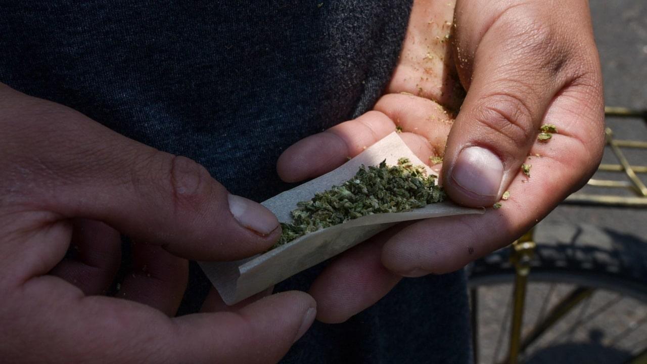 Marihuana trafico EU México