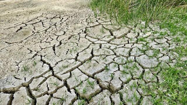 Cambio Climático Calor Sequía Menos Lluvia