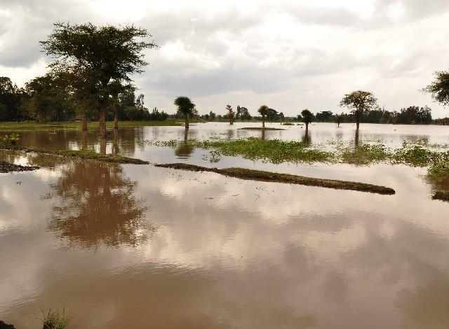 ¿Habrá más lluvias e inundaciones? Advierten posible reaparición del fenómeno de 'La Niña' este año; esto sabemos