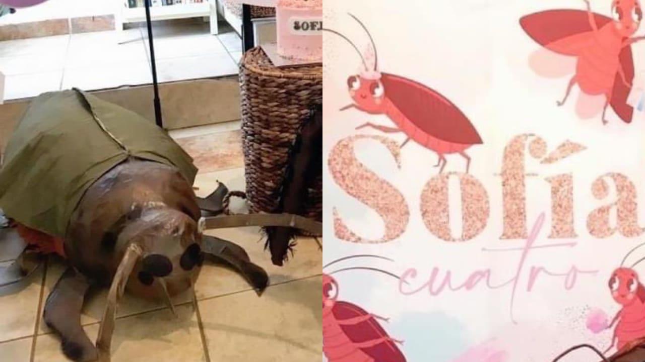 niña se disfraza de cucaracha para celebrar su cumpleaños