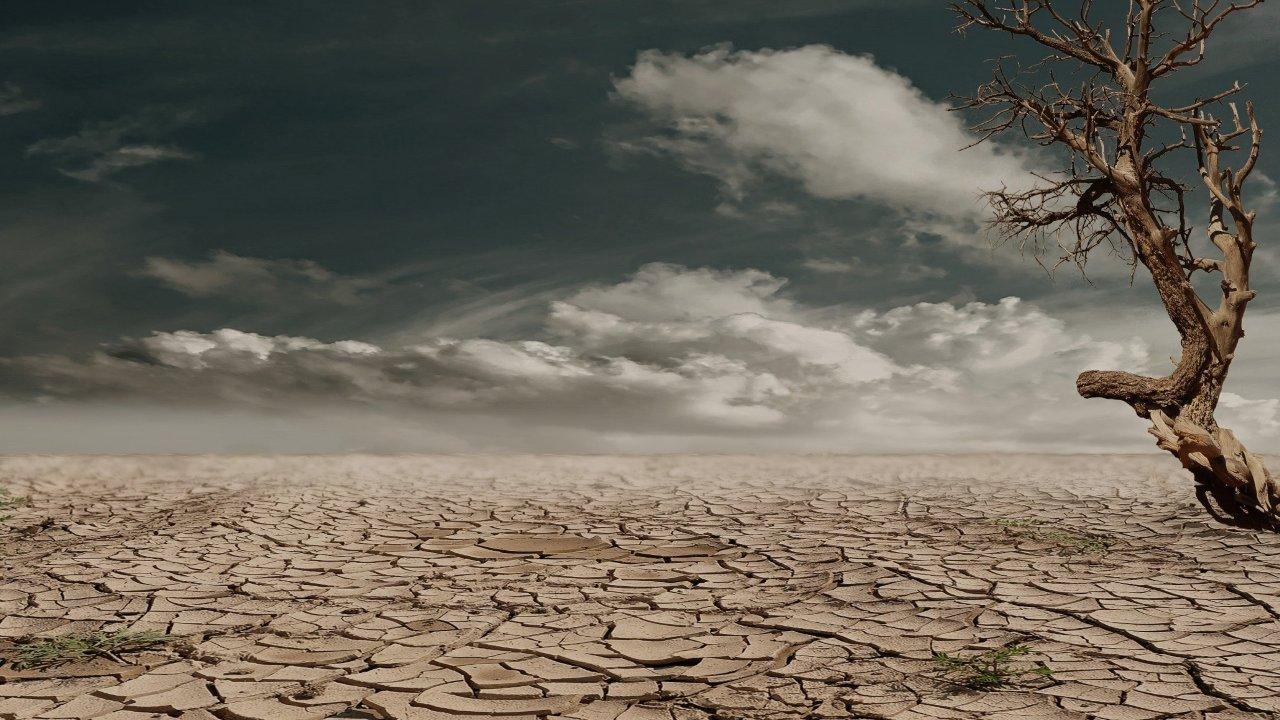 cambio climático propaga virus más rápido estudio