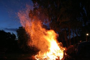 Bonfire_Embers
