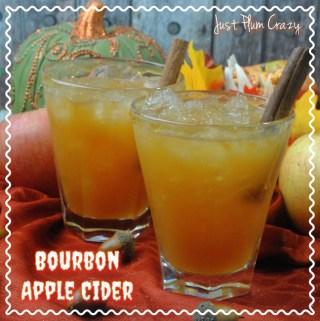 Bourbon Apple Cider Cocktail Recipe