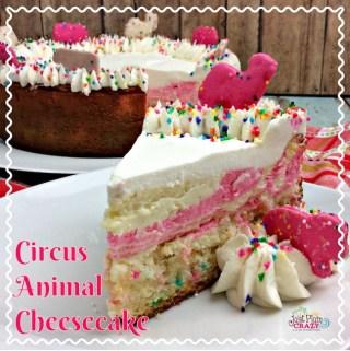 Crazy Circus Animal Cheesecake Recipe