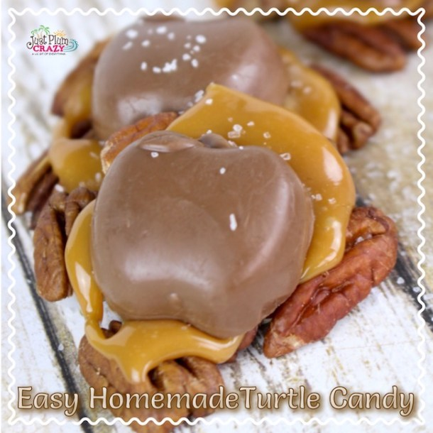 TheHarvest Homemade Turtle Candy Recipe is made with pecans, Caramel Creams and chocolate for a taste that will keep you coming back for more.