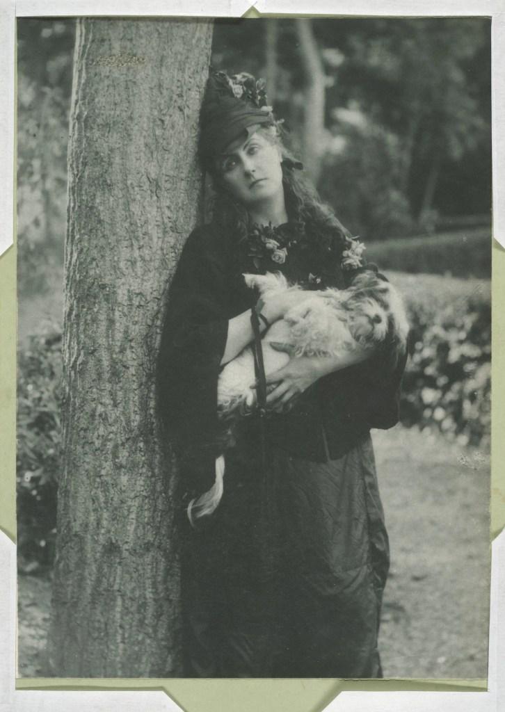 Les chiens (1890's) par Pierson