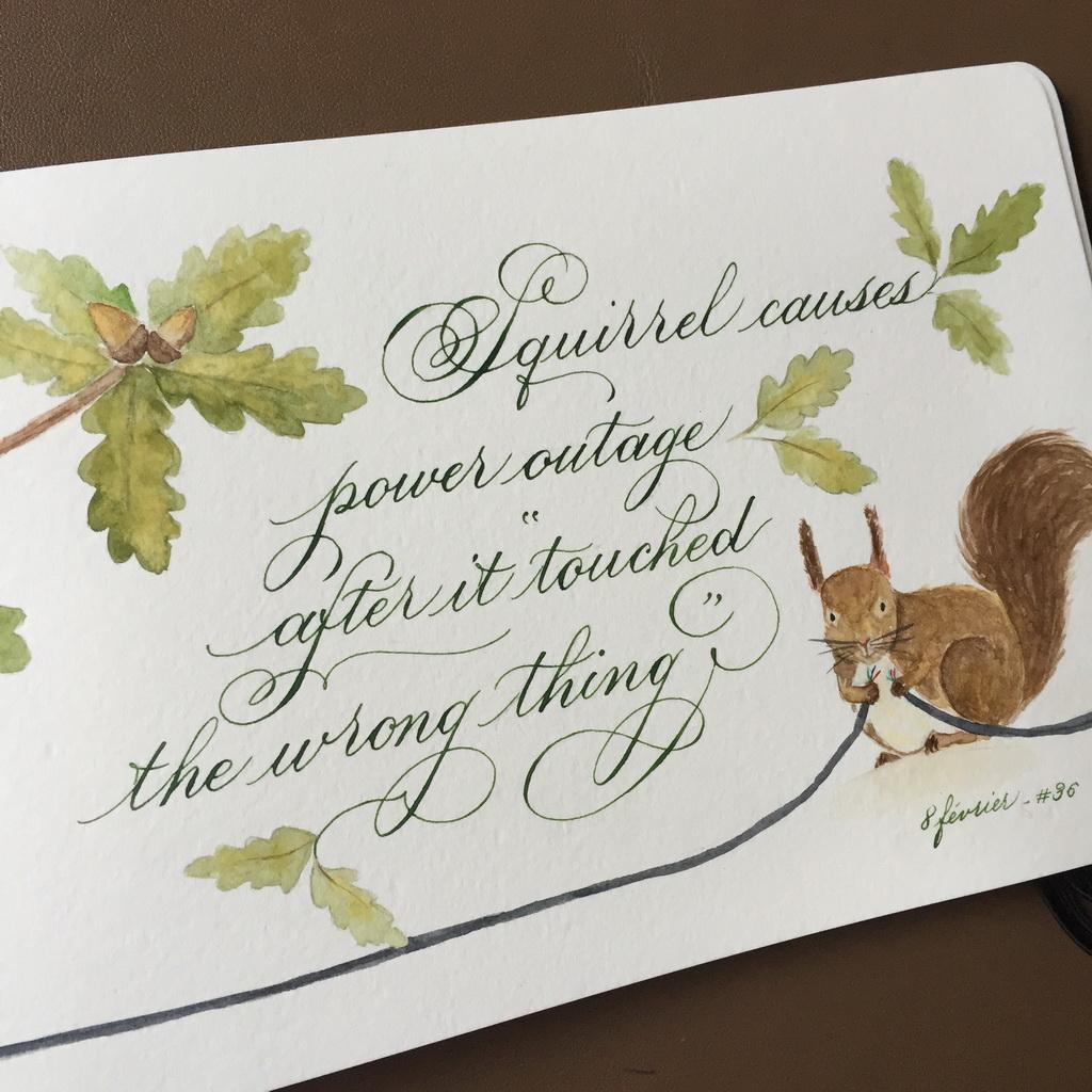 calligraphie ecureuil