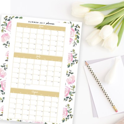 Free Summer Planning Printable - At-a-glance Summer 2017