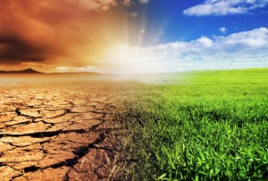 climate change heal preserve planet