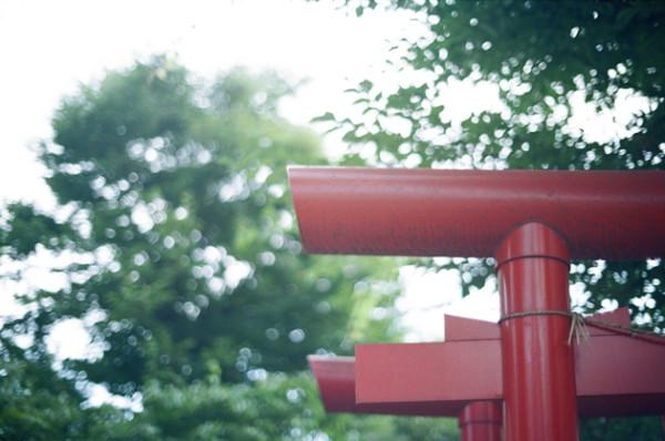 フィルムカメラに色温度調整フィルター青をつけて撮影してみた_鳥居_濃い目青フィルター_MARUMI_MC-80B
