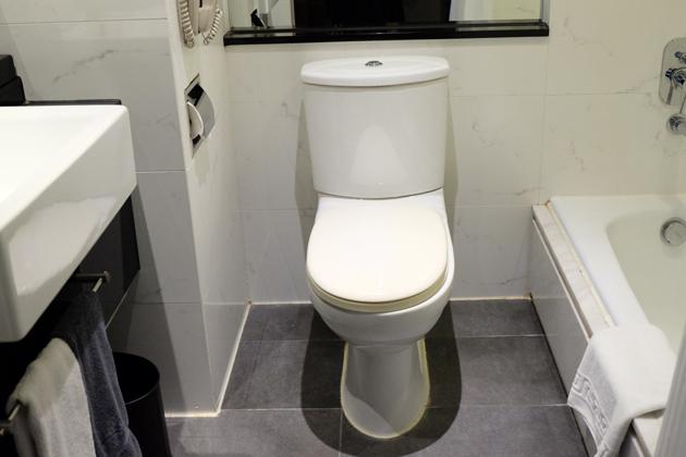 ホテルパノラマバイロンバス_お部屋_トイレ