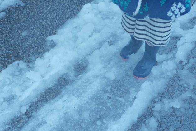 雪の日_雨でべちゃべちゃに