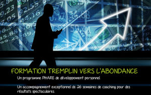 formation anthony nevo tremplin vers l'abondance