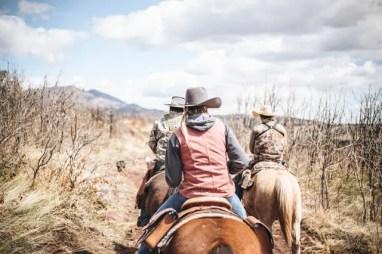 meilleurs romans western