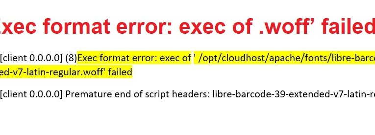 Exec format error: exec of .woff' failed in Apache