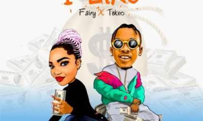 Fairy x Tekno I Like