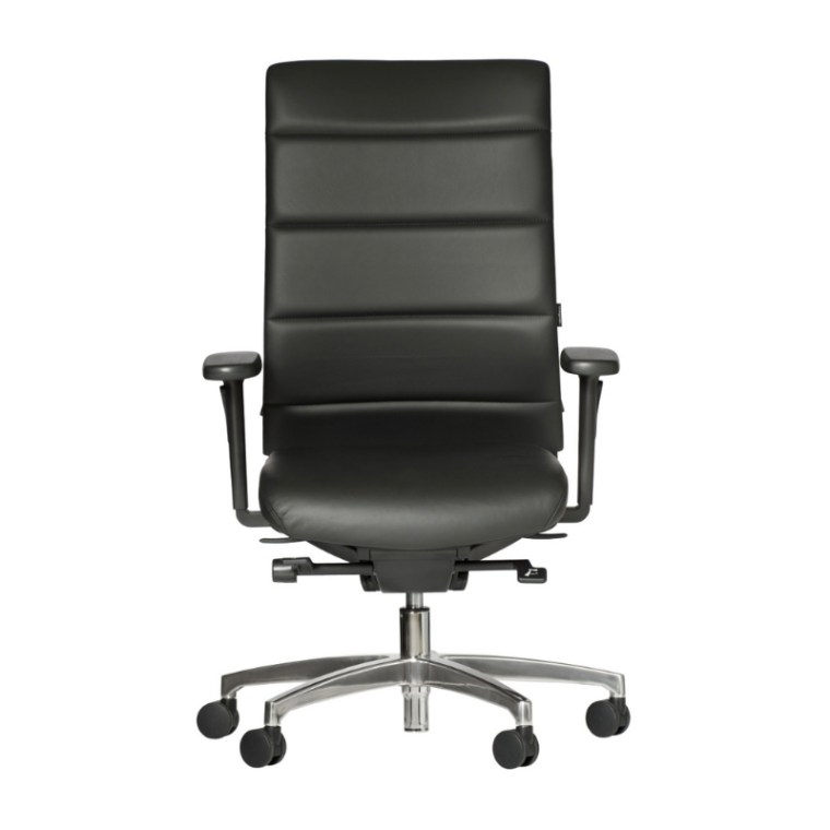 Ergomedic Executive Chair with arms