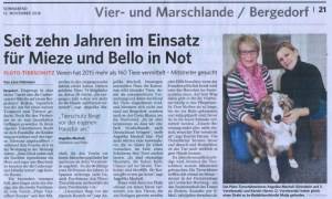 Bergedorfer Zeitung 12.11.2016