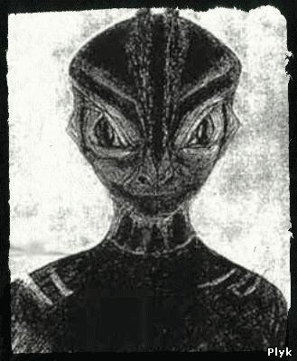 племя Догонов, Сириус звезда, самая древняя цивилизация