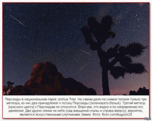 Звездопад Персеиды в национальном парке Joshua Tree