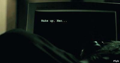 Проснись Нео