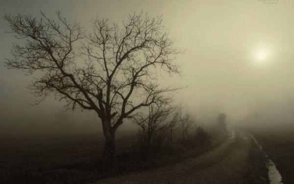 туман 3