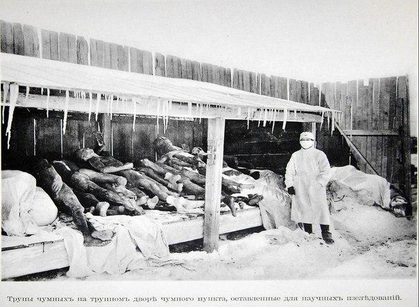 Эксперименты над людьми Отряд 731. Продолжение