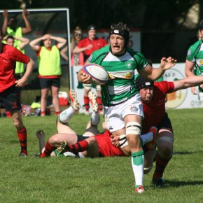 Albion will consider making their players available for county rugby