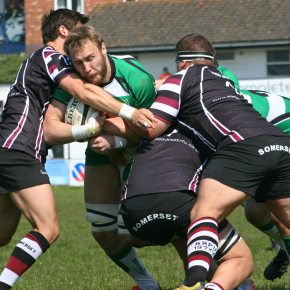 Williams looking forward to returning to professional rugby after re-signing for Albion