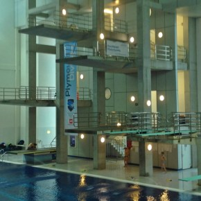 Plymouth Diving enjoy successful day at National Age Group Championships in Sheffield
