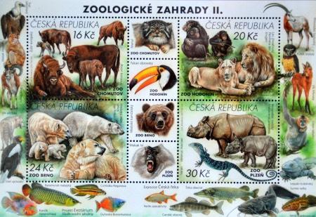 aršík zoo 2