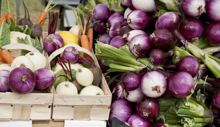 farmářské trhy v plzni