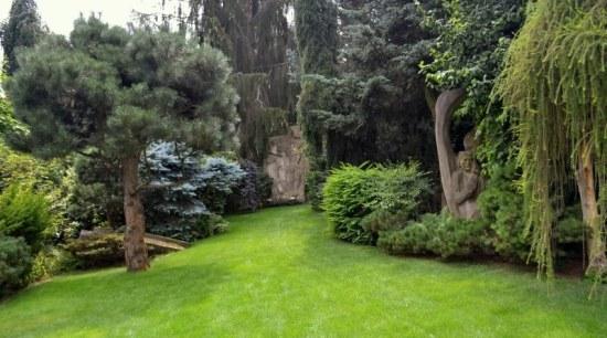 meditační zahrada